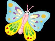 Teminis drugelio  gimtadienis